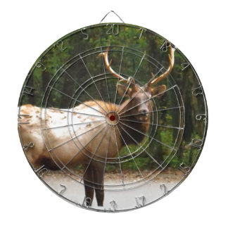 2 Rocky Mountain Elk Dart Board