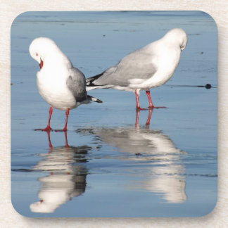 2 Seagulls on a Beach Coaster