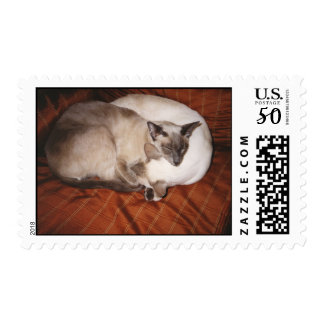 2 Siamese Cats: Tortie and Seal Point Postage
