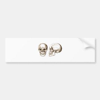 2 Skulls Sepia Bumper Sticker