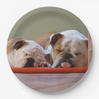 English Bulldog Paper Plate | Zazzle.com