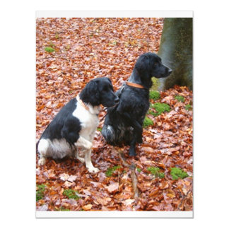 2 small musterlander pointers sitting.png magnetic card