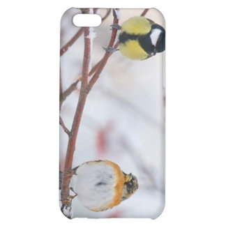 2 sparrows case for iPhone 5C