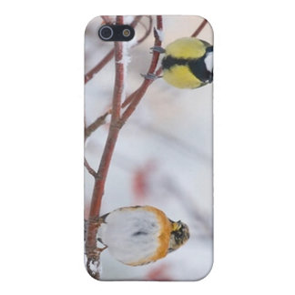 2 sparrows iPhone 5 cover