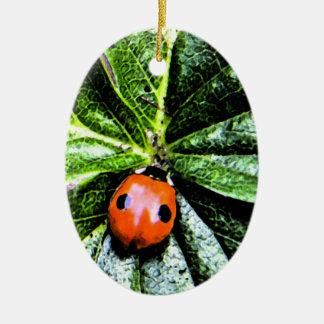 2-spot ladybug 4 ceramic ornament