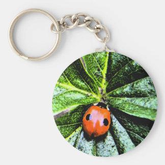 2-spot ladybug 4 key chains