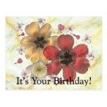 2 su su cumpleaños postal