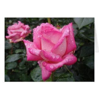 2-Tone Pink Rose Card