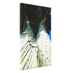 2 Trees Gallery Wrap Canvas