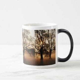 2 TREES SEPIA GOLD ORANGE 11 OZ MAGIC HEAT Color-Changing COFFEE MUG