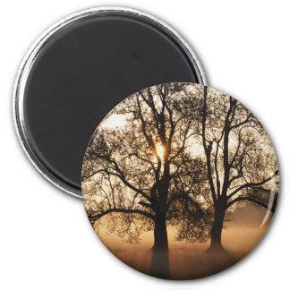 2 TREES SEPIA GOLD ORANGE 2 INCH ROUND MAGNET