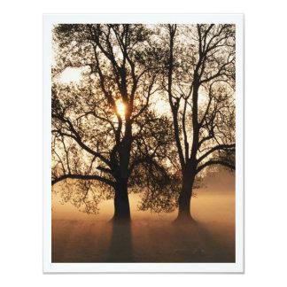 2 TREES SEPIA GOLD ORANGE CARD