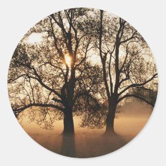 2 TREES SEPIA GOLD ORANGE CLASSIC ROUND STICKER