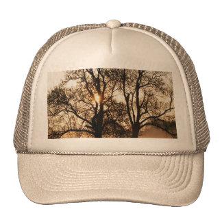2 TREES SEPIA GOLD ORANGE TRUCKER HAT