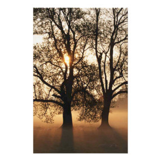 2 TREES SEPIA GOLD ORANGE STATIONERY