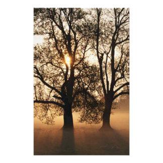 2 TREES SEPIA GOLD ORANGE STATIONERY