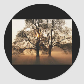2 TREES SEPIA GOLD ORANGE STICKER