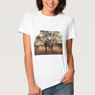 2 TREES SEPIA GOLD ORANGE T-SHIRT