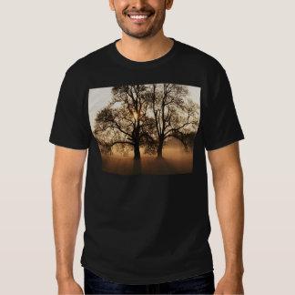 2 TREES SEPIA GOLD ORANGE TEE SHIRT