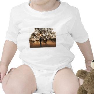 2 TREES SEPIA GOLD ORANGE TSHIRT