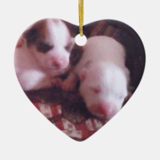 2 week/s Old, Pinky Noses, Cute Pupps Ceramic Ornament