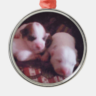 2 week/s Old, Pinky Noses, Cute Pupps Metal Ornament