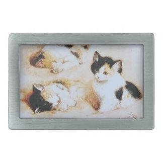 2 where the kitten wakes up rectangular belt buckles