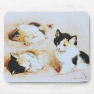 2 where the kitten wakes up mouse pad