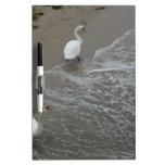 2 White Birds Pizarras Blancas
