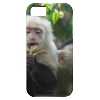 2 White Face Capuchin Monkeys iPhone SE/5/5s Case