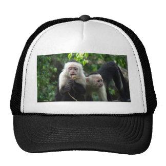 2 White Face Capuchin Monkeys Trucker Hat