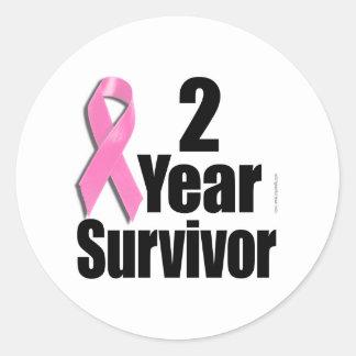 2 Year Breast Cancer Survivor Classic Round Sticker