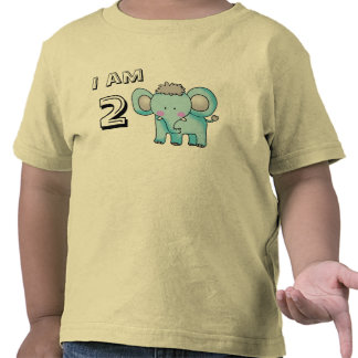 2 year old birthday boy/girl (elephant) tee shirt