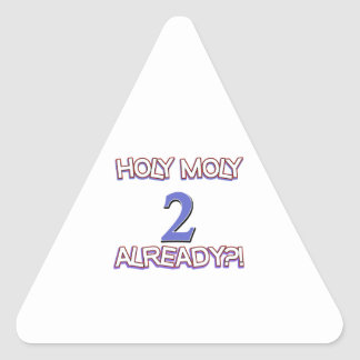 2 year old designs triangle stickers