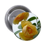 2 Yellow Roses Button