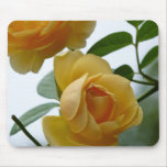 2 Yellow Roses Mouse Pad