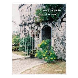¡2a-mine, saludos de las Bahamas! , Julia Henkle Postal