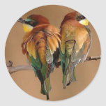 2birds pegatina redonda
