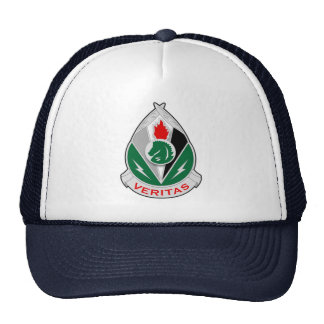 2d Psychological Operations Group DUI Trucker Hat
