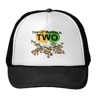 2das camisetas y regalos de balanceo del gorro de camionero