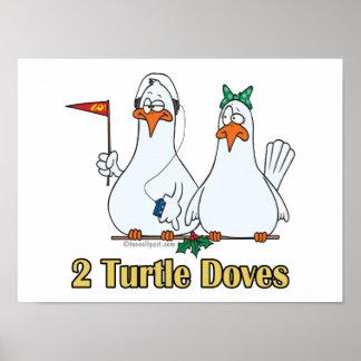 2do día de dos palomas de la tortuga en segundo lu posters