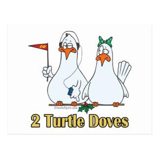 2do día de dos palomas de la tortuga en segundo tarjeta postal