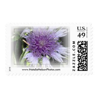 2do Flor púrpura entintada Sellos