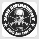 2nd Amendment Come And Take It Skull And AR's Square Stickers