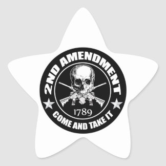 2nd Amendment Come And Take It Skull And AR's Star Sticker