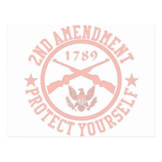 2nd Amendment Protect Yourself Light Pink Postcard