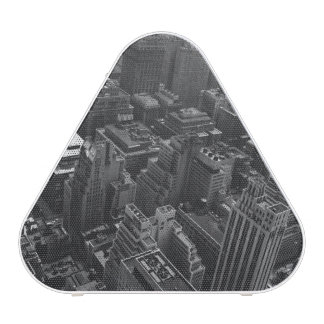 2nd May 1961:  The Chrysler building in New York Bluetooth Speaker