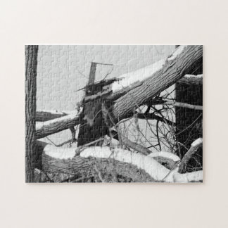 2X4 en la ocultación Rompecabezas Con Fotos