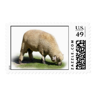 300_2A0019 SHEEP LAMB Grazing farm animals Postage