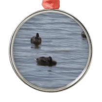 3024 Ducks in water b Metal Ornament